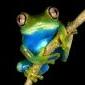frosken